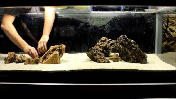 Rocas en acuario iwagumi