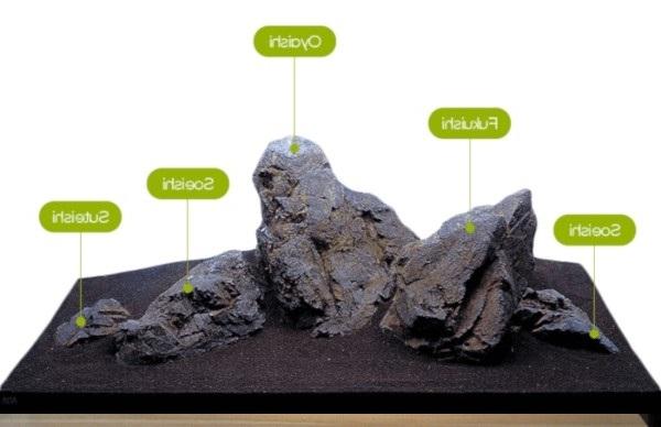 Rocas del acuario iwagumi