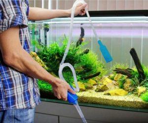 Cambiar agua acuario