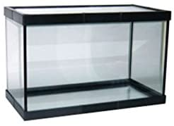 Pecera de Cristal sin oxigeno 11 litros